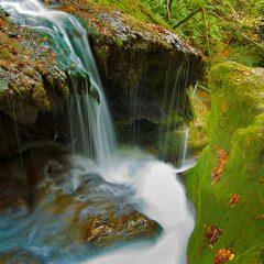 cheile-nerei-beusnita-national-park-susara-waterfall